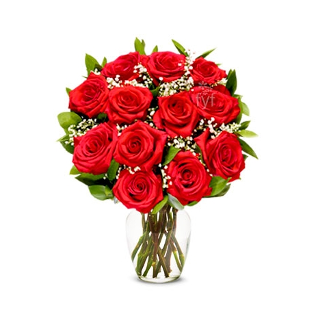 Send One Dozen Premium Long Stem Red Roses to Dhaka in Bangladesh