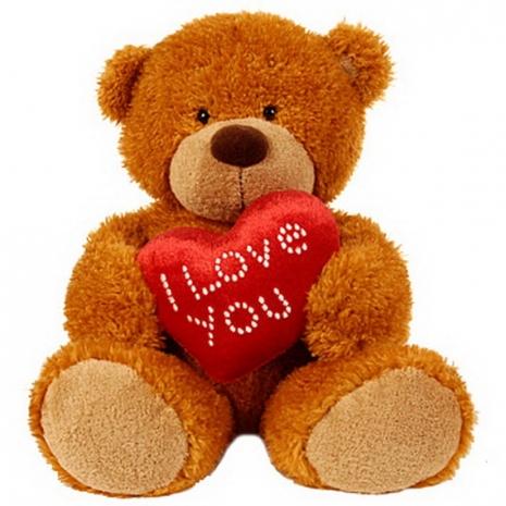 Love Bear Send to dhaka