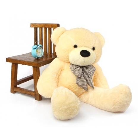Extra BIG Teddy Bear Send to dhaka